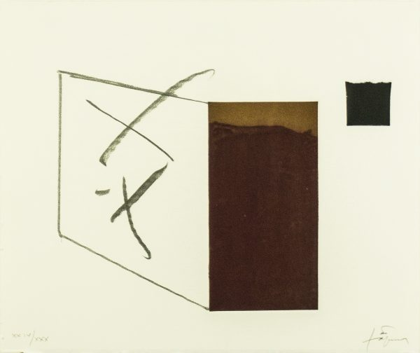 variations_tapies_main